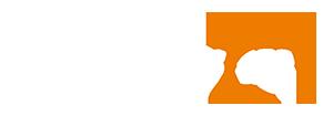 Nexus 850 Logo